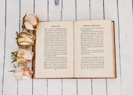 一本被翻开的英语书图片(14张)