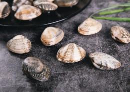 新鲜的蛤喇图片(11张)