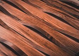 纹理各异的木头图片(10