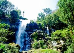森林里的瀑布图片(10张)