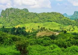 绿意盎然的自然风景图片(11张)