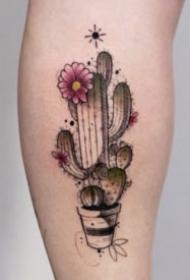 唯美的一组小臂小清新点刺纹身图片