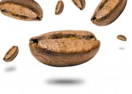 白色背景的咖啡豆图片(10张)