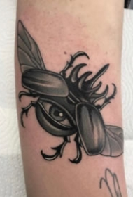 暗黑色调的一组昆虫纹身图片欣赏
