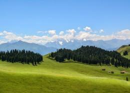 新疆索尔巴斯陶自然风景图片(14张)