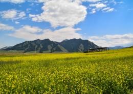 新疆乌鲁木齐南山雪岭鹰沟自然风景图片(13张)