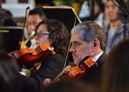古典音乐会图片(10张)