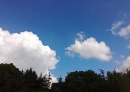 晴空白云图片(11张)