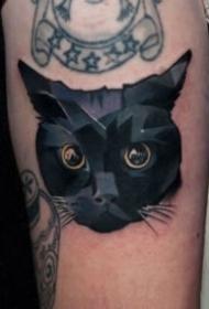 猫主题的一组9张猫纹身图案
