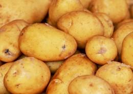 成堆的新鲜土豆图片(16张)