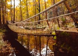唯美的秋天色彩图片(11张)