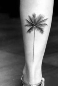 小清新黑色的小椰子树纹