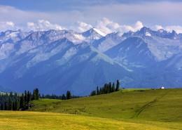新疆伊犁喀拉峻大草原自