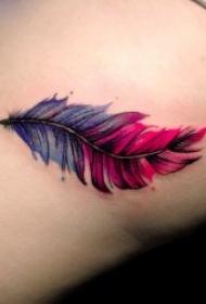 羽毛纹身图   10款轻柔而又唯美的羽毛纹身图案