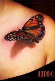 蝴蝶纹身图案 女生身上漂亮的立体蝴蝶纹身图案