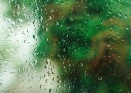 玻璃上的水珠图片 (11张