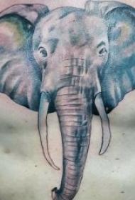 小象纹身图案   10款憨态可掬的小象纹身图案