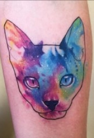猫的纹身图案 多元素的可爱猫咪纹身图案