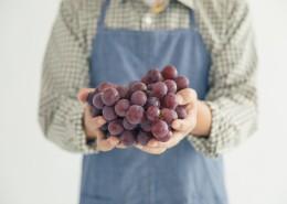 手捧成熟丰收的葡萄图片(8张)