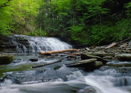 森林小溪山间流水图片(15张)