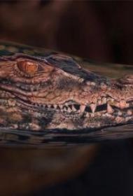鳄鱼纹身图案  9张凶猛