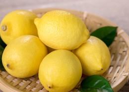 柠檬图片(10张)