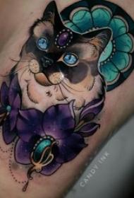 猫的纹身图案 形态各异或彩绘或黑灰风格猫的纹身图案