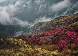 尼泊尔喜马拉雅山自然风景图片(10张)