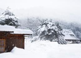日本白川乡雪景风景图片(9张)