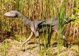 白垩纪时期的恐龙模型图片(12张)