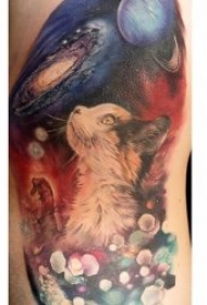 猫的纹身图案   慵懒而又机灵的动物猫纹身图案