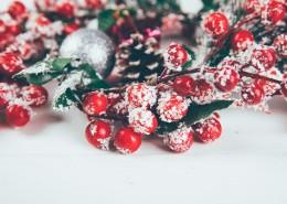 颜色丰富的圣诞节礼物图片(10张)