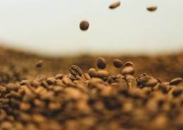 一堆咖啡豆的图片(11张)