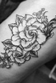 栀子花纹身 芬芳馥郁的栀子花纹身图案