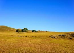 内蒙古自治区乌兰布统秋