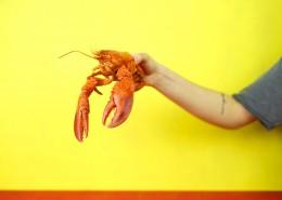 煮熟的龙虾图片(10张)