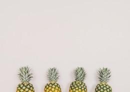 外皮粗糙的菠萝图片(12
