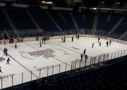冰上曲棍球比赛现场图片(10张)