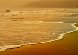细软的海滩图片(11张)