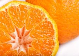 新鲜多汁的橘子图片(9张)