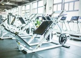 运动锻炼健身器材图片(1