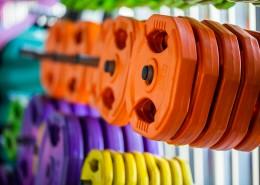 健身器材哑铃片图片(10张)