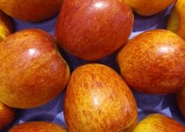 水果店里的水果图片(13张)