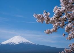日本富士山的景色图片(9张)