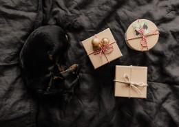 床上的礼物盒和狗图片(12张)