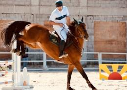 骑马的人图片(11张)