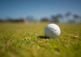 小小的白色高尔夫球图片