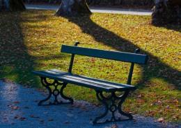 户外的长椅图片(14张)