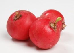 清脆营养健康的红萝卜图片(8张)