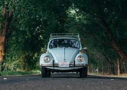 老款的甲壳虫汽车图片(1
